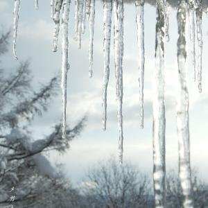 【散歩写真】いつかの雪国①