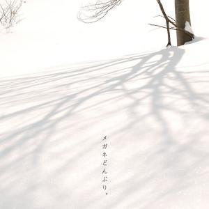 【散歩写真】いつかの雪国④と楽天でブーツ買ったよ。