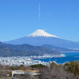 【散歩写真】快晴だったので富士山を見に