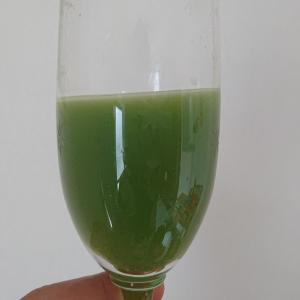 松の葉ジュースに。松の葉サイダー、松の葉茶