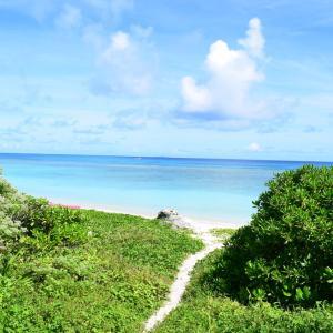 夏旅☆八重山諸島 波照間のニシ浜の海①