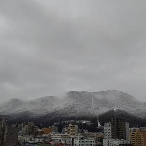 4月の雪。
