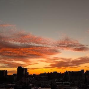 美しい朝から始まる。