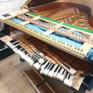 ピアノの調律をして頂きました♪