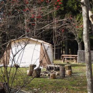 今年初めのキャンプはふもとっぱらへ。