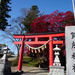 『賀茂神社』の紅葉