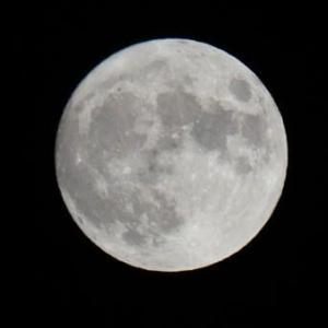 『中秋の名月』