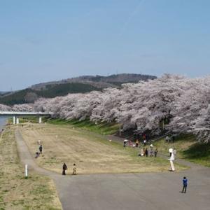 『一目千本桜』(大河原~船岡)