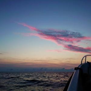 8月上旬の釣り♪♪