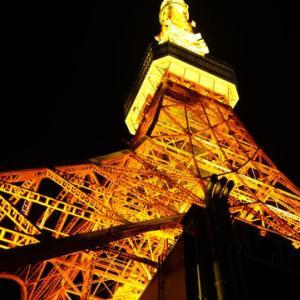 sakeの歩窓から(東京タワーCITY LIGHT FANTASIA )