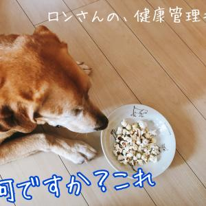 わんこだって、ポップコーン☆今日の犬おやつ☆