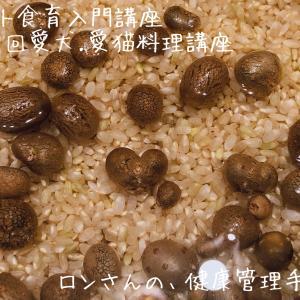 2019年9月17日 第39回 愛犬・愛猫料理講座~猫ごはん編~ ご感想