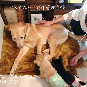 ペット食育入門講座☆開催報告☆20200223