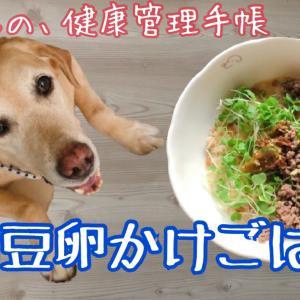 犬ごはん☆納豆卵かけごはん☆生卵は大丈夫なの?