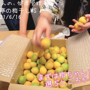 流花亭の梅干しWS☆20210616☆