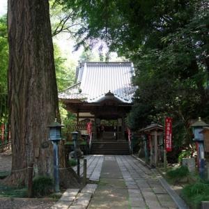 蓮田から薬師池を巡り薬師堂へ(前回の続き)