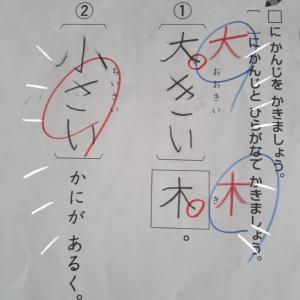 2640   小学1年生、やっと漢字が始まった!
