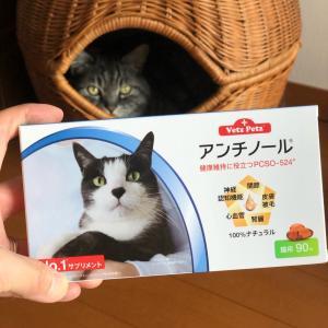 オメガ3はヒトにもネコにもよい