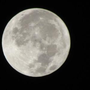 丑三つ時、月は煌々と真上に居る