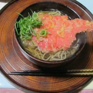 今夜のディナーは「紅生姜天ぷらそばのみ」
