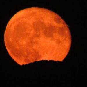 文月・十六夜にしてやっと月の出を・・・