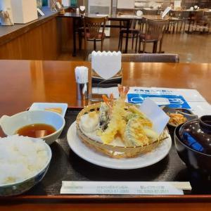 トワイライト🌇ランチ・天ぷら定食継続は?惨め!