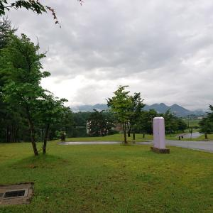 徳倉湖~自然のアヒルを発見!