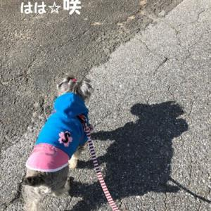 咲のにっき☆おさんぽ☆48