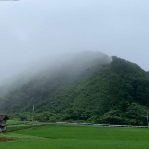 朝の山と道。