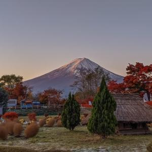 19/Nov 紅葉と富士五湖巡りの旅 後半