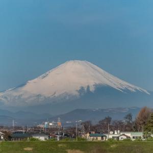 27/Mar 富士山と花鳥風月