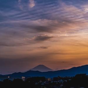 17/May  富士山とカワセミと薔薇