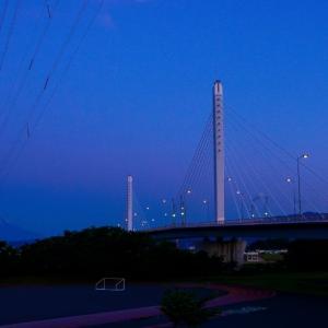 21/Jun  雨上がりの富士山と花鳥風月