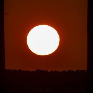 22/Sep 秋分の日の朝陽と富士山🗻と野鳥たち