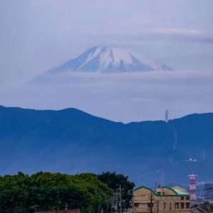 02/Jun  おぼろげな朝の富士山🗻とカワセミのホバリング