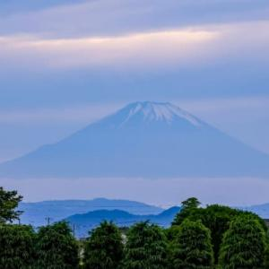 07/Jun 富士山とシャボン玉とオオハルシャギク