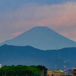 21/Jun 朝の富士山とカワセミの幼鳥