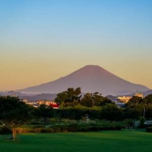 04/Aug  朝焼けの富士山とカワセミ
