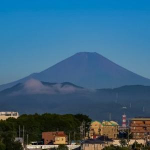 05/Aug 朝の富士山とセキレイとカワセミ