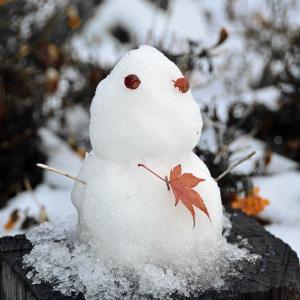雪遊び。。過去写真♪