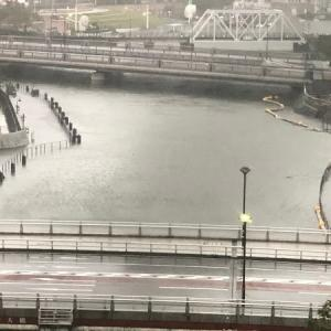 台風19号~一変する景色