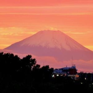 仕事帰りの夕暮れお池・・・・富士山に鳥?笑
