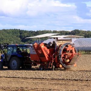 【2019年10月今金町紀行・その③】今金の広大な畑を見学していよいよJA今金馬鈴薯センターへ