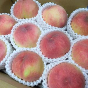 福島の桃🍑