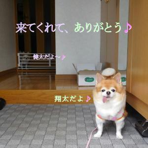 散歩 9月21日の5選写真♪