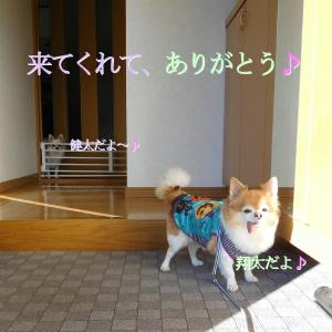 散歩 10月25日の5選写真♪