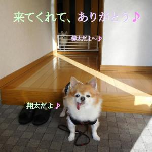 散歩 9月19日の5選+α写真♪