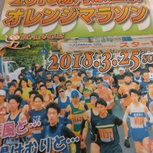 明日は湯河原温泉オレンジマラソン