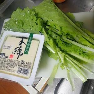 虫食い野菜でキムチ鍋