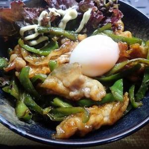青椒肉絲丼